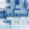 Выставки в Любинском